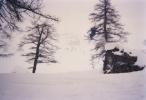 Jerome Gaspard - cascadeur - Ski Freeride - 1996