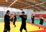 Jerome Gaspard - cascadeur - performance (9) - stage cours formation ecole