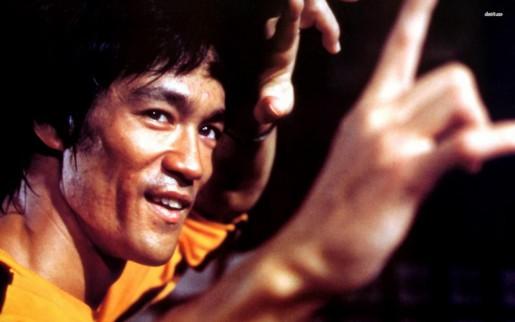 Histoire de la cascade - Bruce-Lee